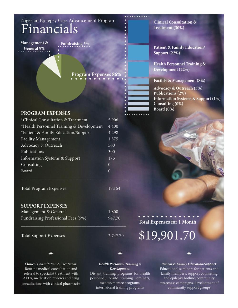 NECAP Financials 2.jpg