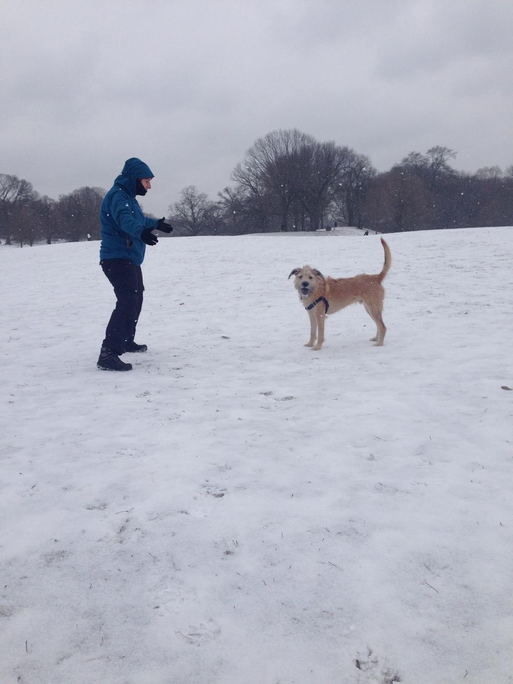 socrates-francesca-park-snow.JPG