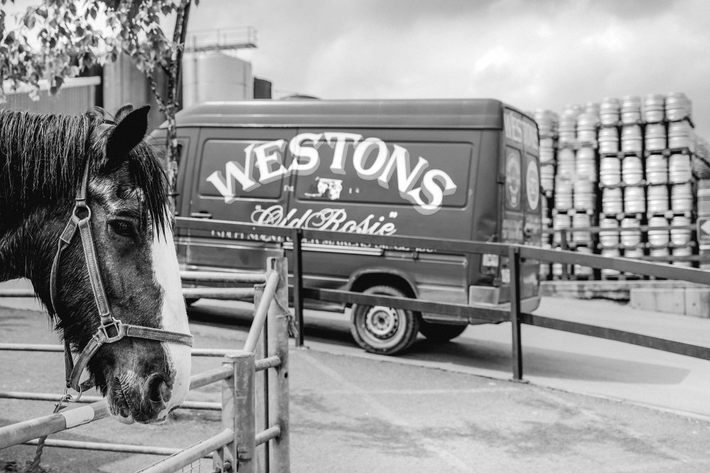Westons Cider Campaign    for Westons