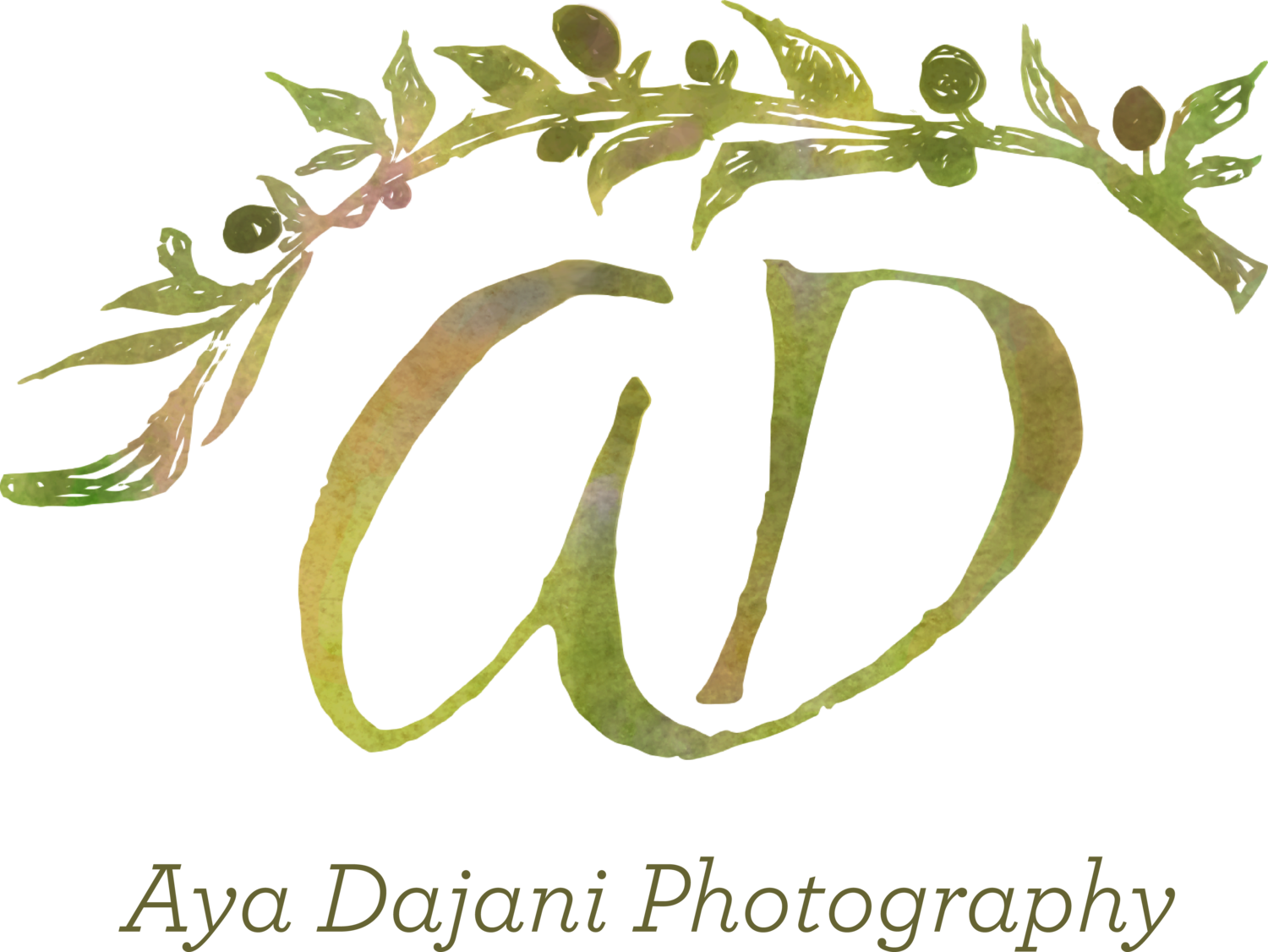 Aya Dajani Photography