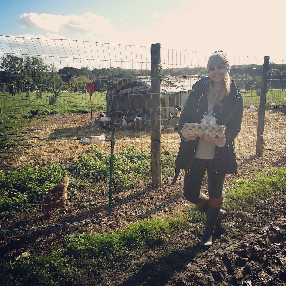Her er jeg hos nabogården, hvor jeg kjøper mine egg fra helt frittgående høns som spiser naturlig (og økologisk) fôr