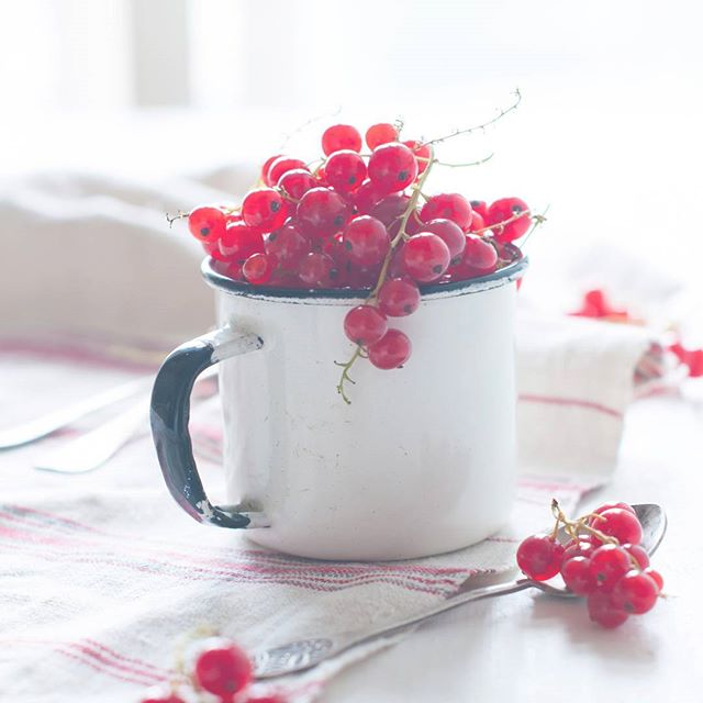 Just planted a whole bunch of red currant bushes in my garden 💕😊 . I have wonderful memories of lazy summer days in my grandmas garden, amongst the giant currant bushes. Grandma would make jams and juices, cakes and dessert.. I want to recreate her recipes and bring them back to life! ❤