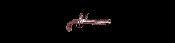 gun_1.png