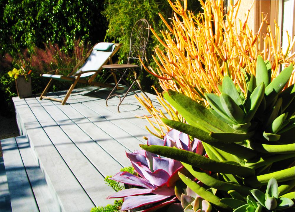 Knibb Design - Ginsberg Garden.jpg