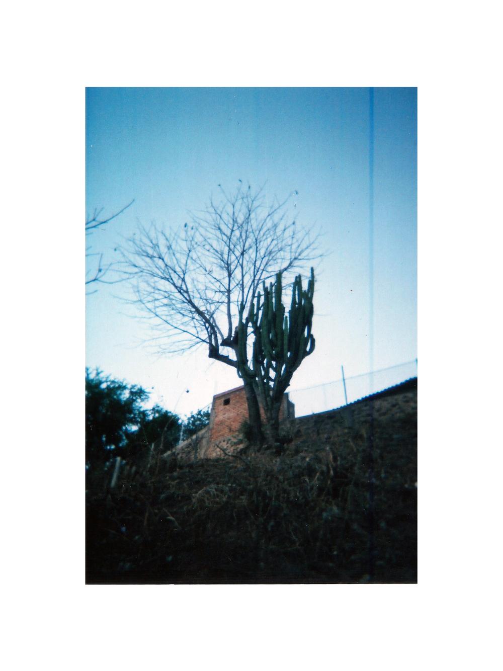 Mexico16.jpg