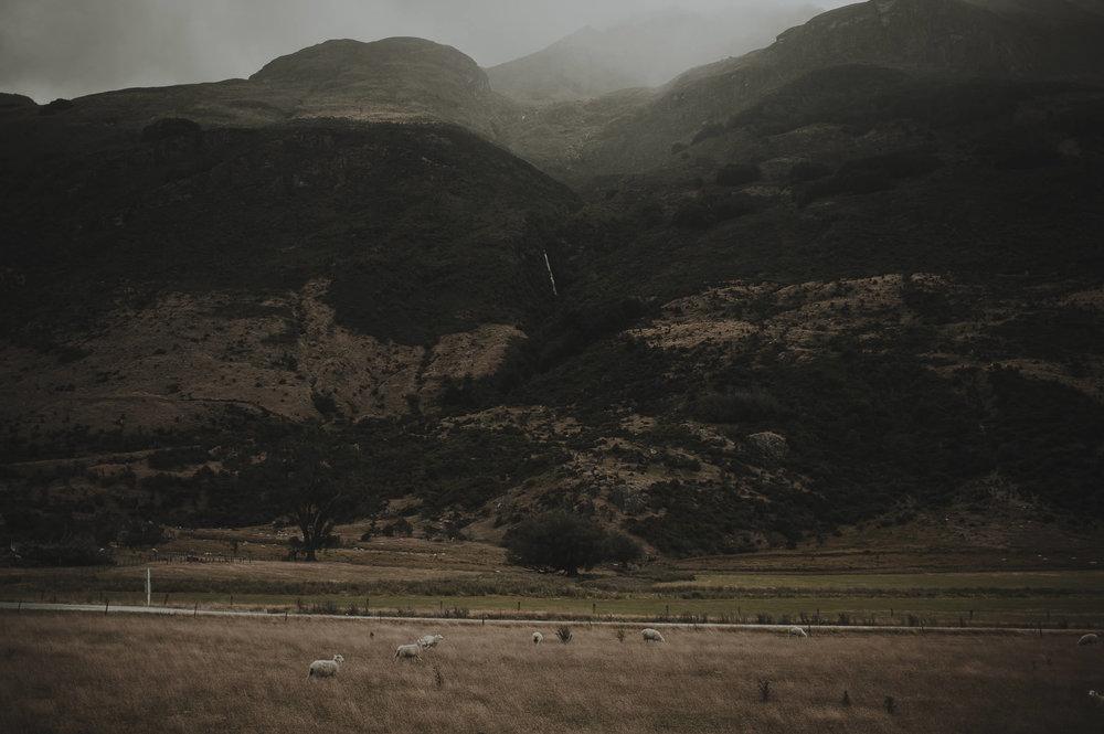 Katie_Hamish_Glenorchy_New_Zealand_Couple_Shoot-20.jpg