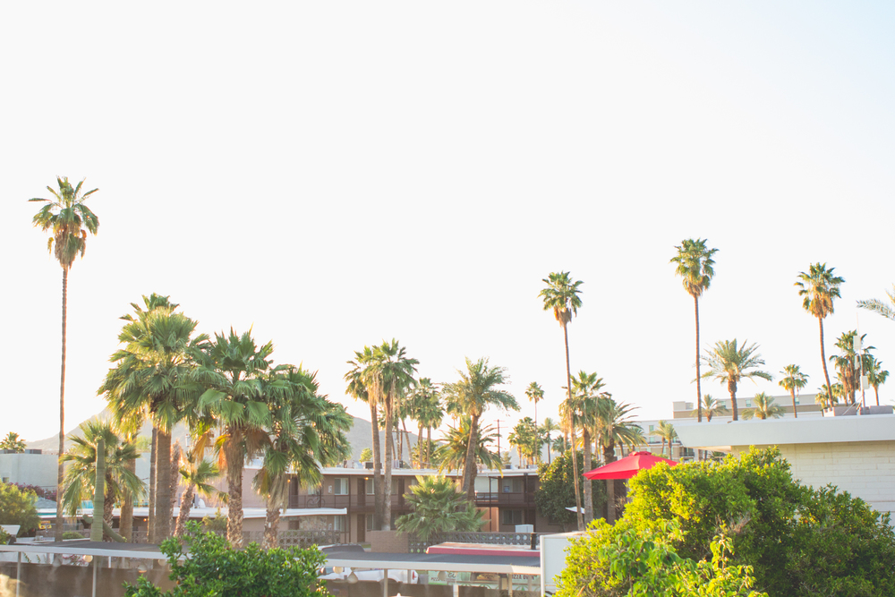 scottsdale-wedding-photography-el-dorado-landscape-wide-shot