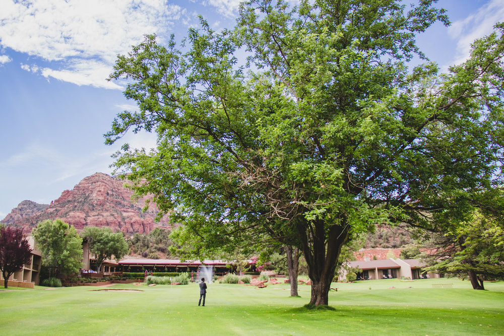 poco-diablo-resort-groom-near-tree-awesome-color