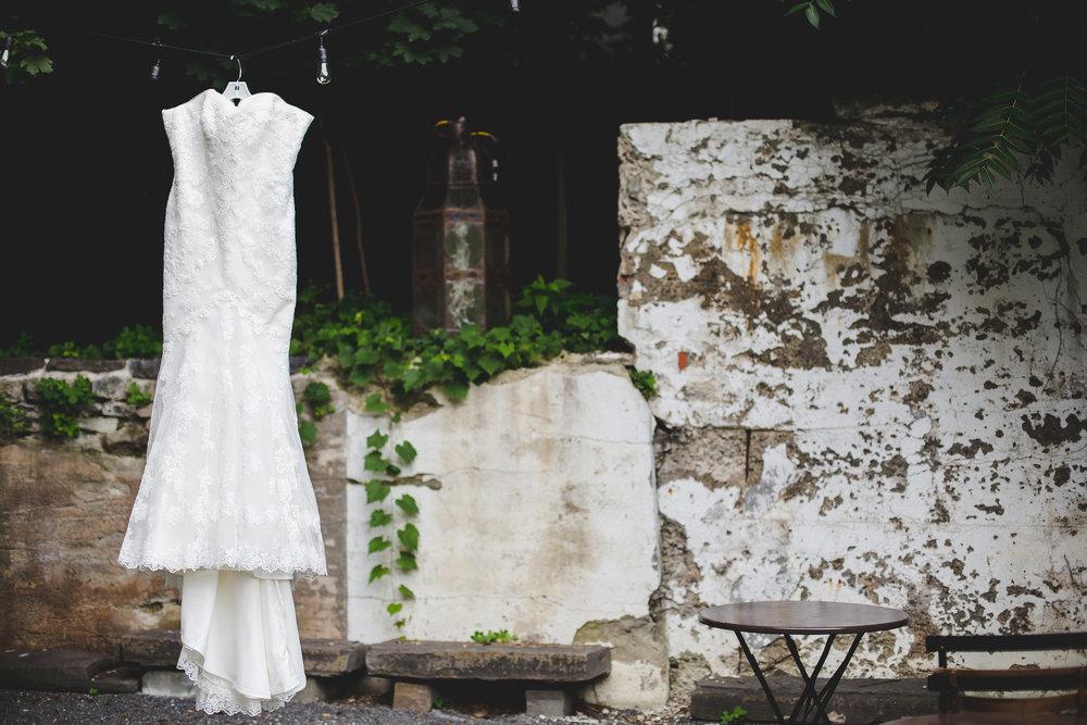 destination-wedding-Ithaca-NY-hanging-dress-shot