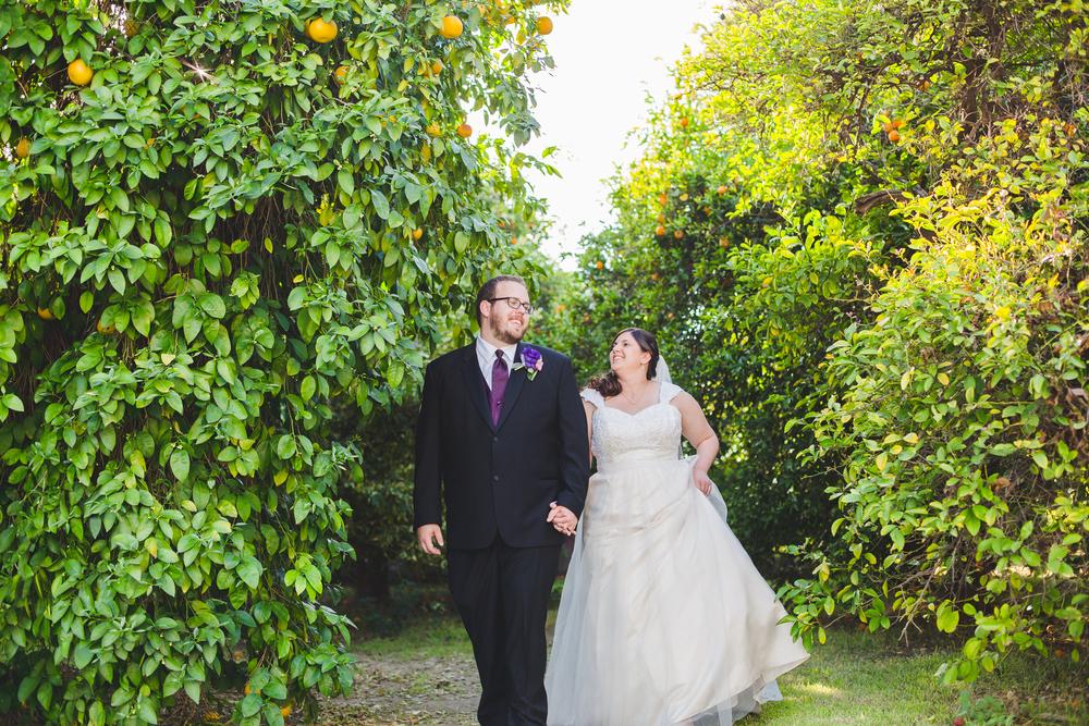 bride and groom walk among orange trees sd