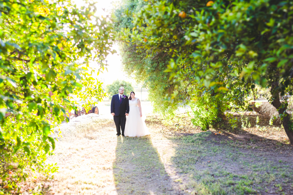 bride and groom benizer method near tress sd