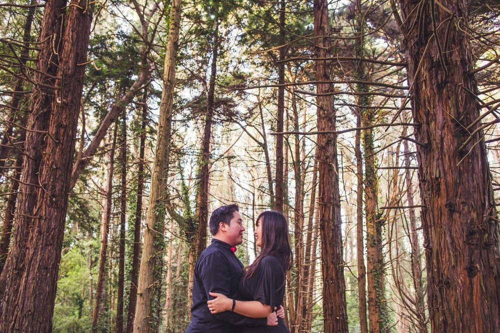 san-francisco-engagement-session-tall-trees