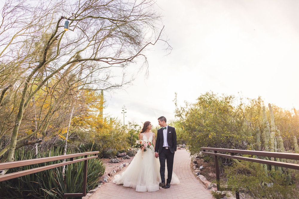beautiful-desert-botanical-garden-wedding