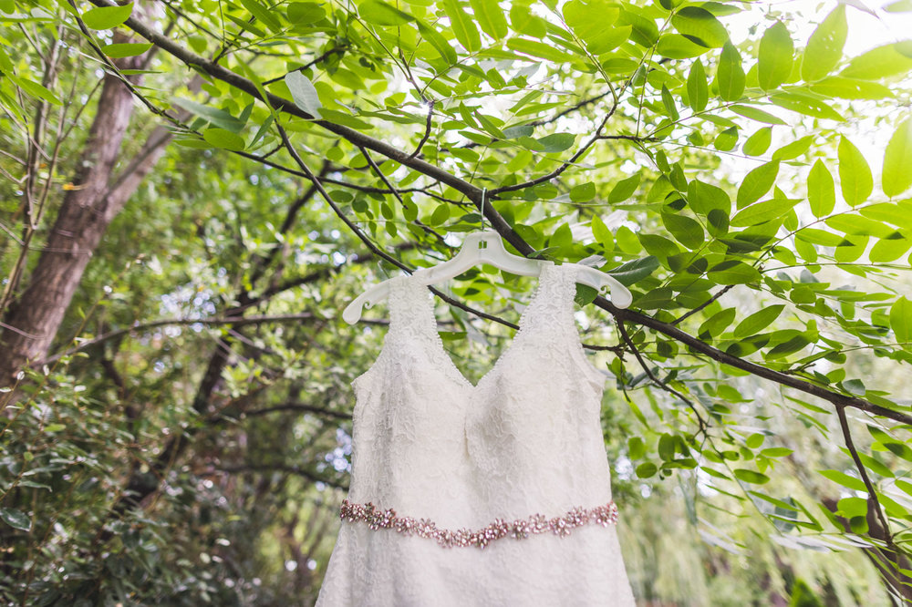 az-wedding-dress-in-tree