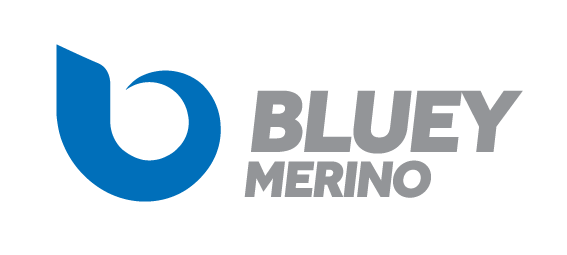 Bluey-Logo-Landscape-Web-Transparent.png
