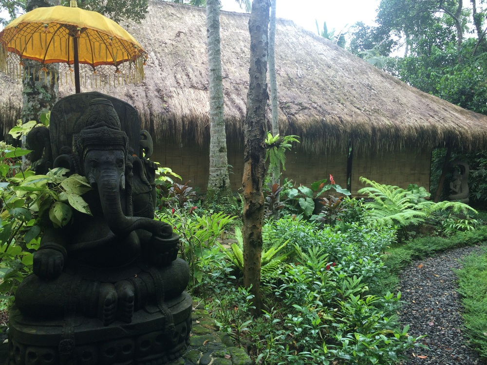Ashtanga Yoga Bali Shala