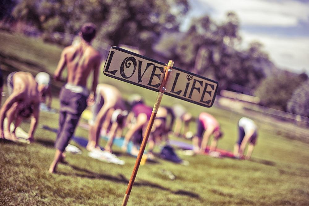 Yoga Rocks The Park 2014