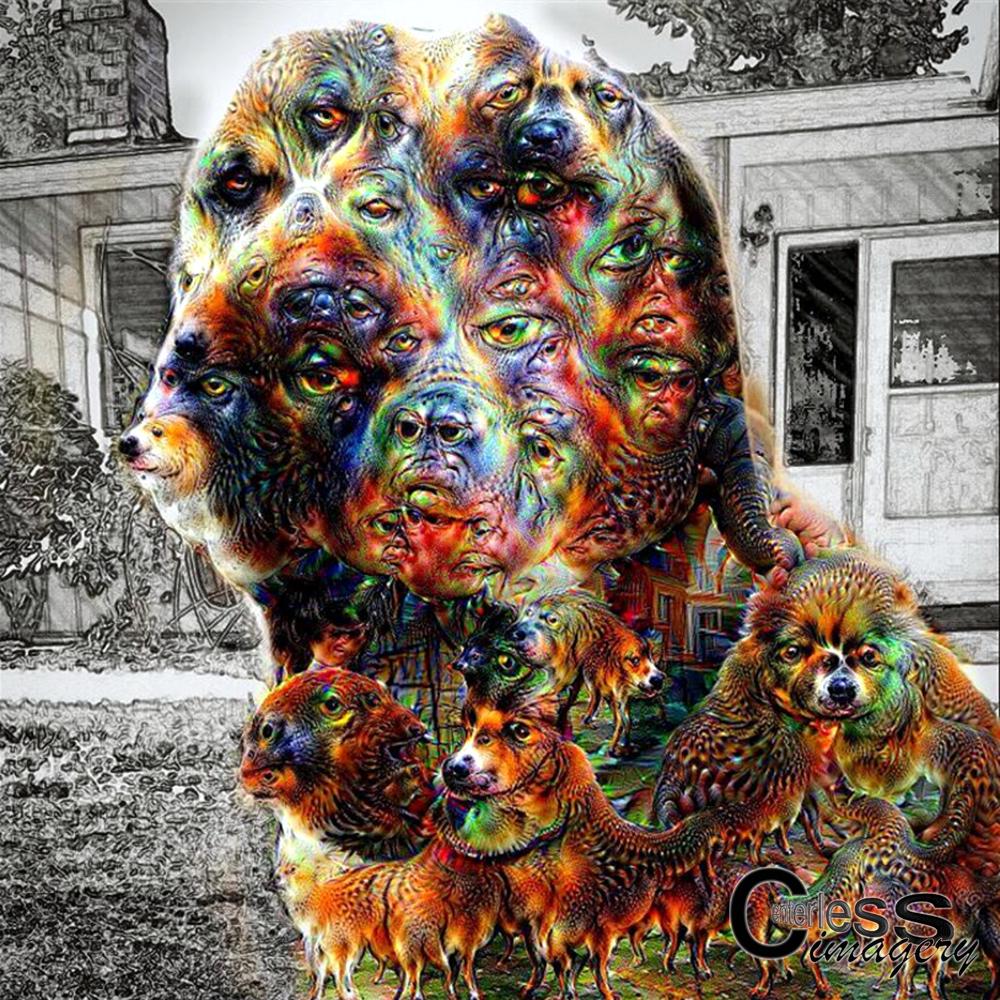 Deep Dog