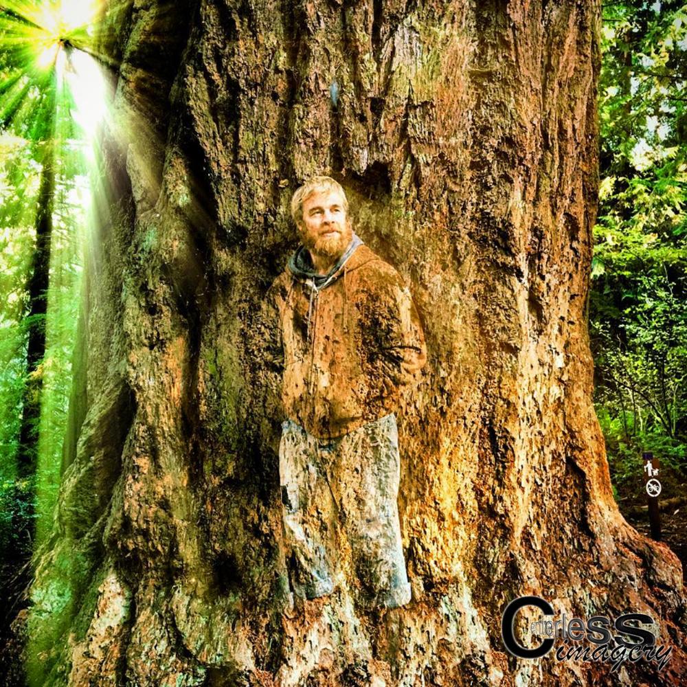 Murph Tree