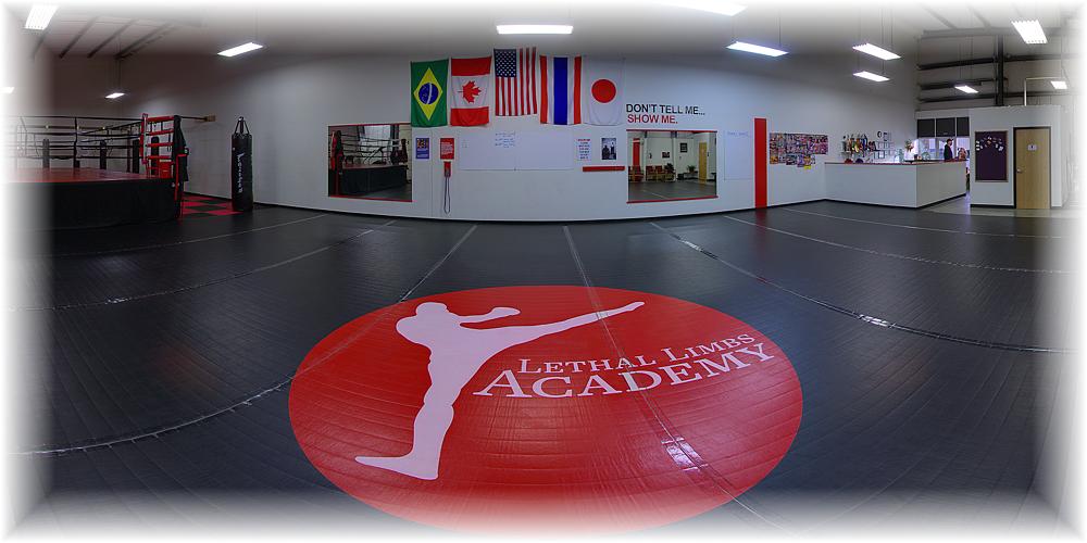 Lethal Limbs Academy