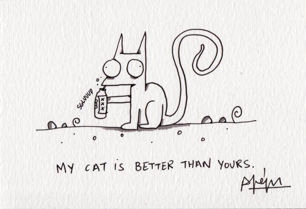 MYCAT6.jpg