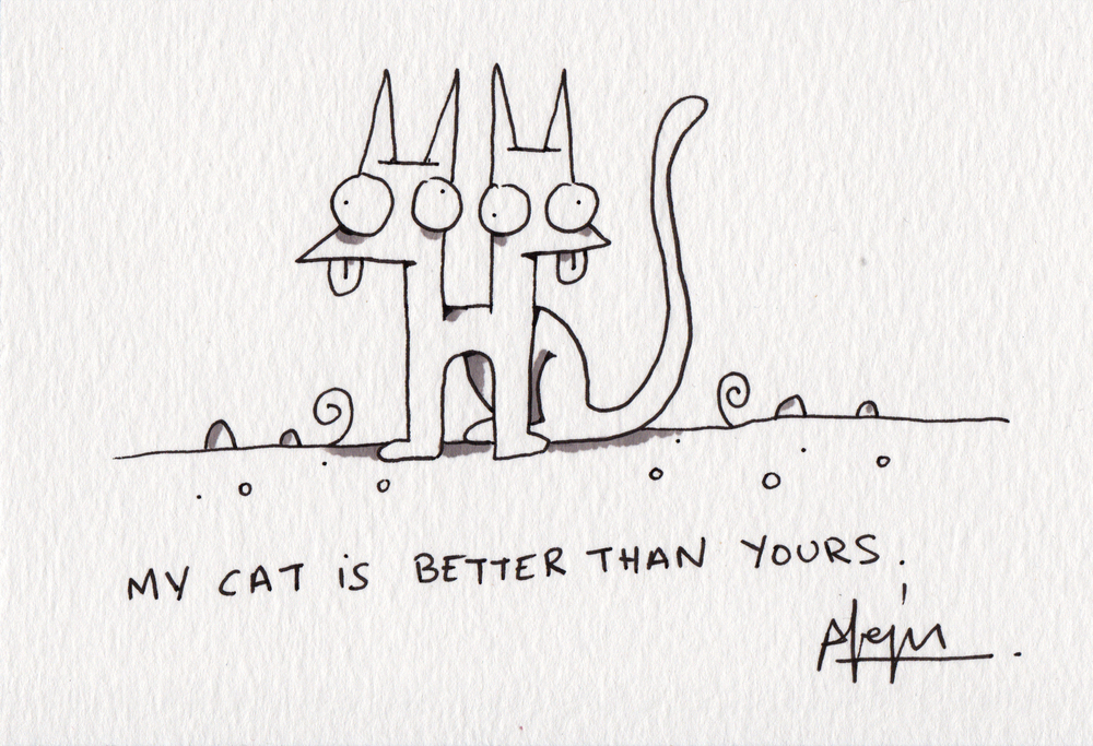 MYCAT8.jpg