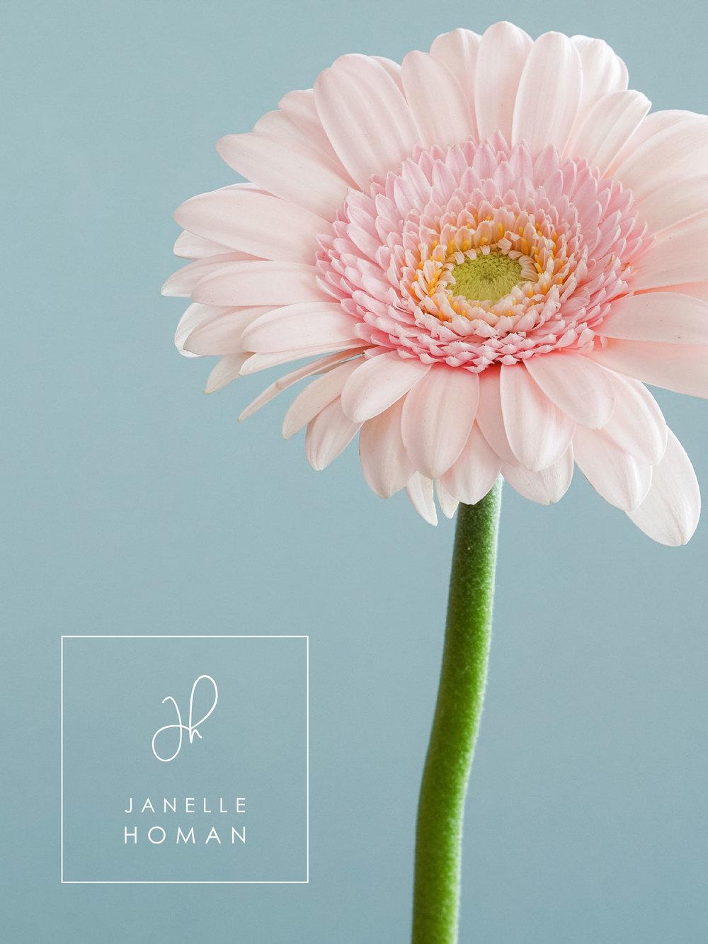 Janelle-Squarelogo.jpg