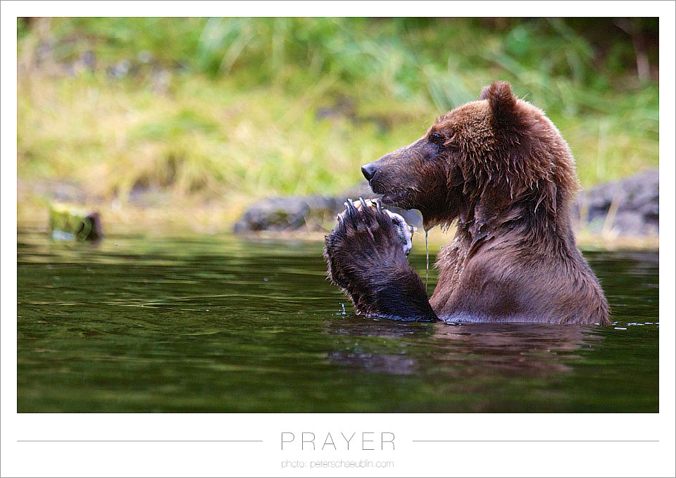 blog_20120915_alaska_08.jpg