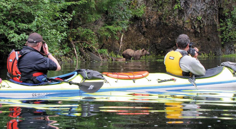 Der liebste meiner unterschiedlichen Arbeitsplätze (ich liebe ihn so, dass ich gar nicht von Arbeit sprechen möchte): Mein Freund Sam (vorn) und ich sitzen im Kajak und beobachten einen Grizzlybären, der sich uns nähert. Während Sam filmt, fotografiere ich. Dabei ist es mir wichtig zu betonen, dass wir stets in Warteposition sind und die Tiere entscheiden lassen, wie nah sie kommen möchten. Wir haben zwei Tage in dieser Bucht verbracht und sassen jeweils fünf bis sechs Stunden im Boot und haben gewartet (Foto: Debbie Douglass)