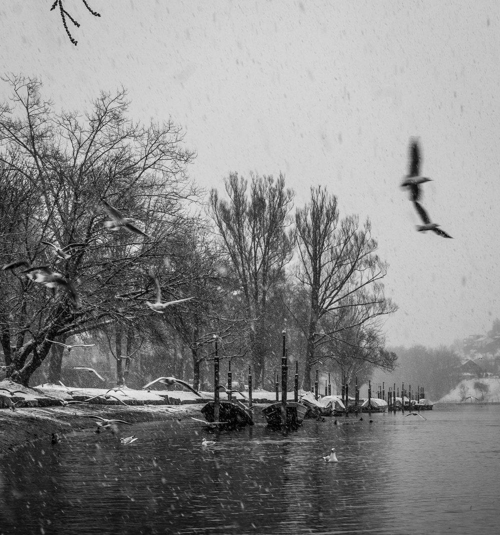 20170115_winterkajaken_P1070514.jpg