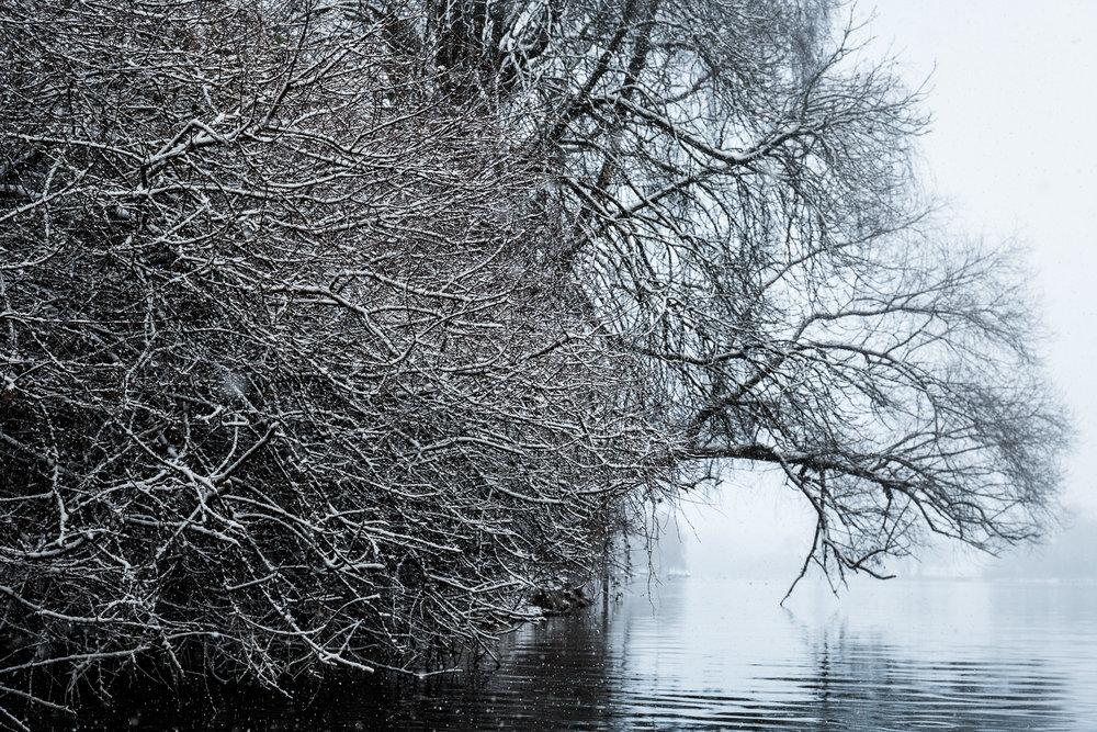 20170115_winterkajaken_P1070565.jpg