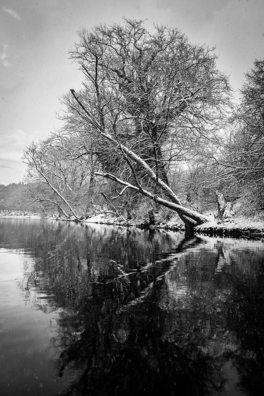 20170115_winterkajaken_P1070625.jpg