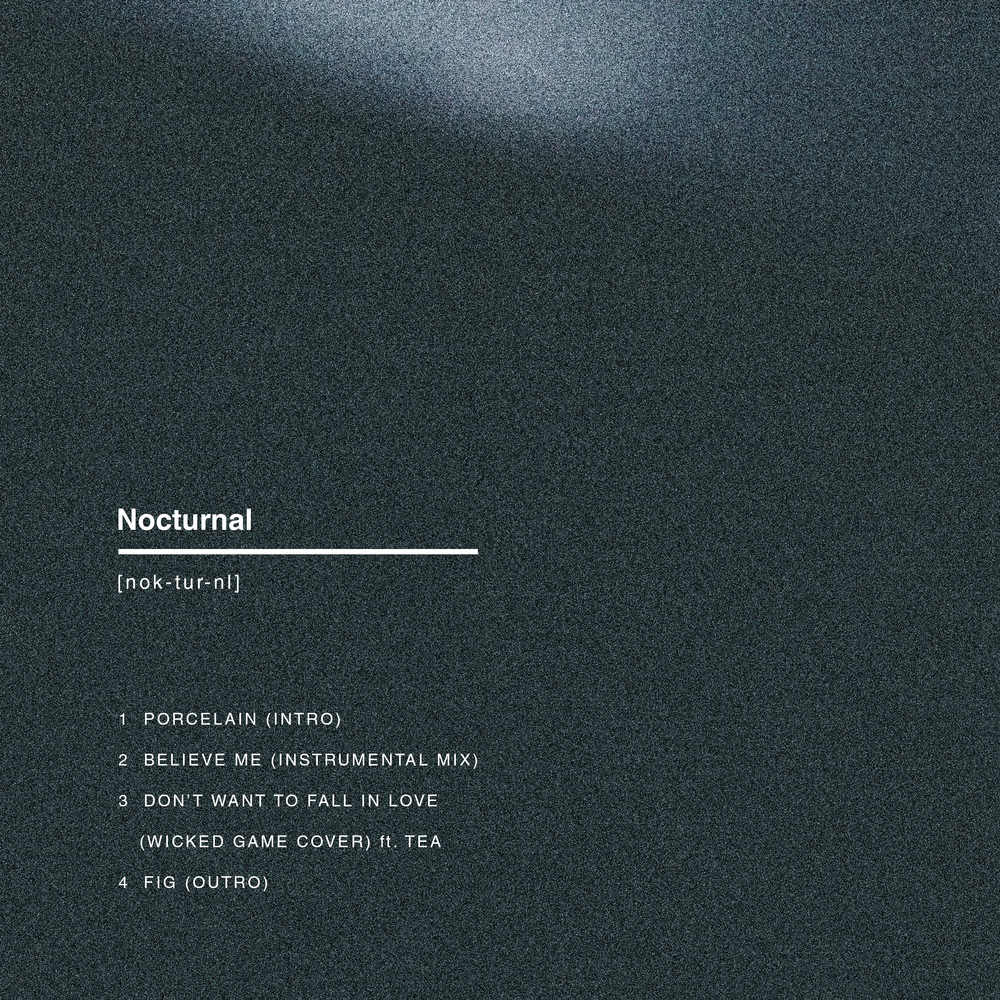 Nocturnal Back Cover .jpg
