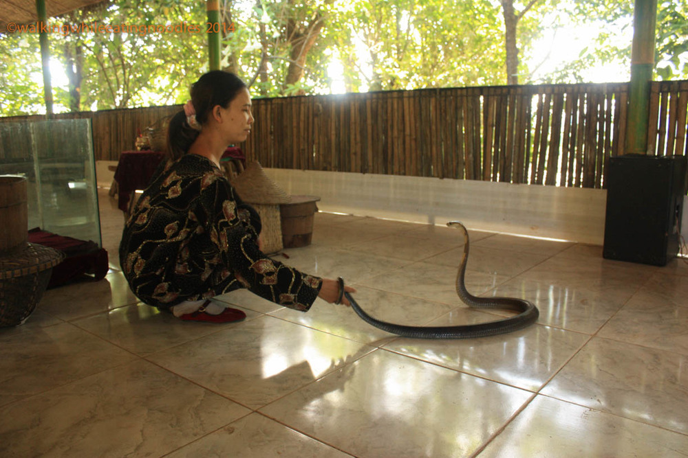 Charming Lady with a Snake