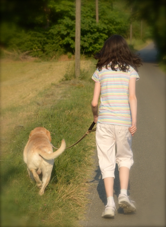 A guest during our last season, sweet Amy from Ireland, walking Max on our road.