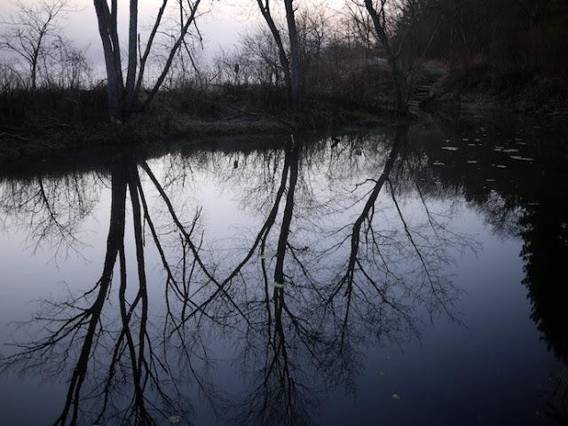 wild+river+17.jpg