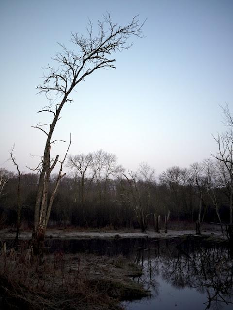 wild+river+16.jpg