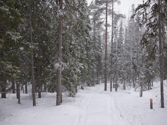 snow+601.jpg