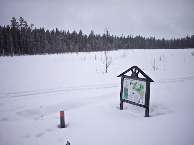 snow+64.jpg