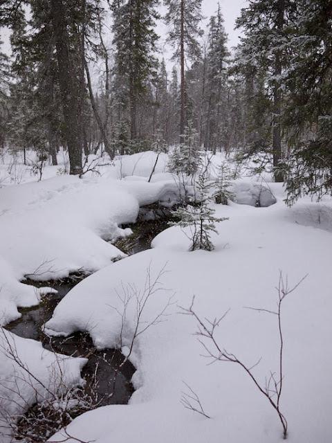 snow+59.jpg