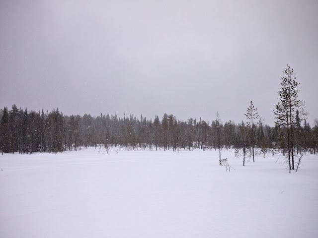snow+60.jpg
