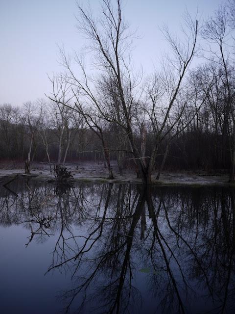 wild+river+15.jpg