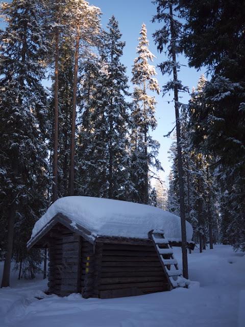snow+9.jpg