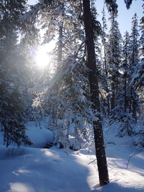snow+2.jpg
