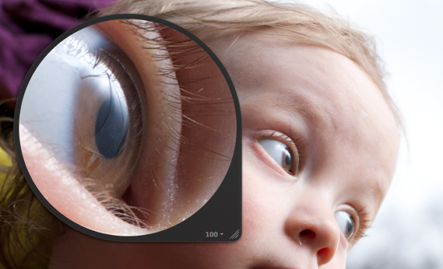 100% loupe, unsharpened or processed. The original image shown here is a 30% crop of a portrait format shot.