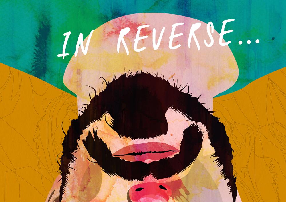 7. In Reverse