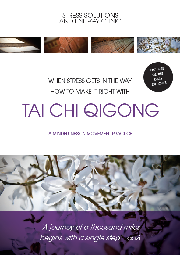 IMAGE Tai Chi QiGong workbook, techniques and exercises for stress reduction - mindfulness in movement