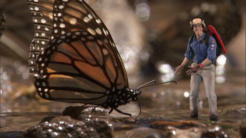 AWA Ep 18 Monarch Butterflies02.mov.10_10_59_05.Still005.jpg