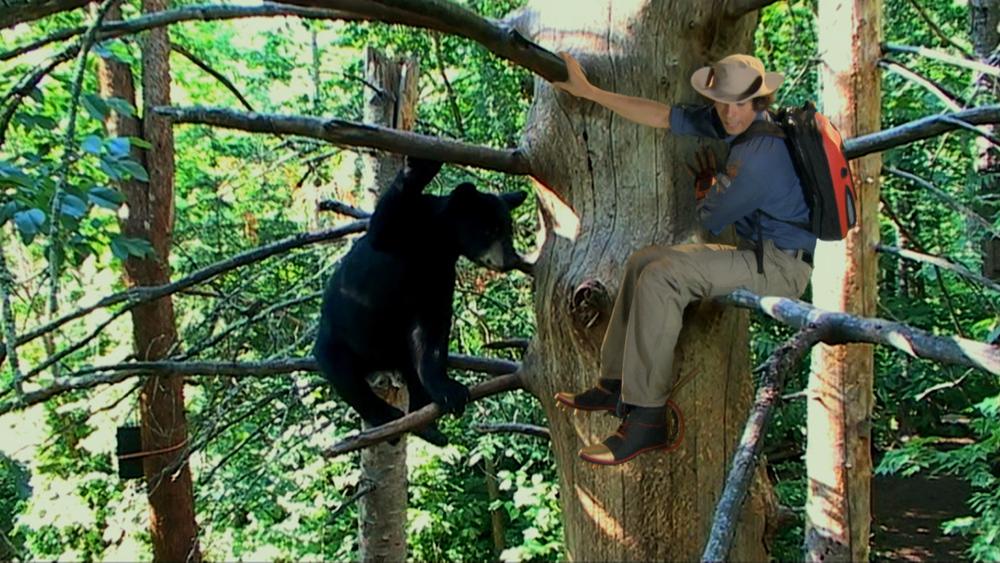 AWA Ep 05_Black Bears02.mov.10_11_10_23.Still001.jpg