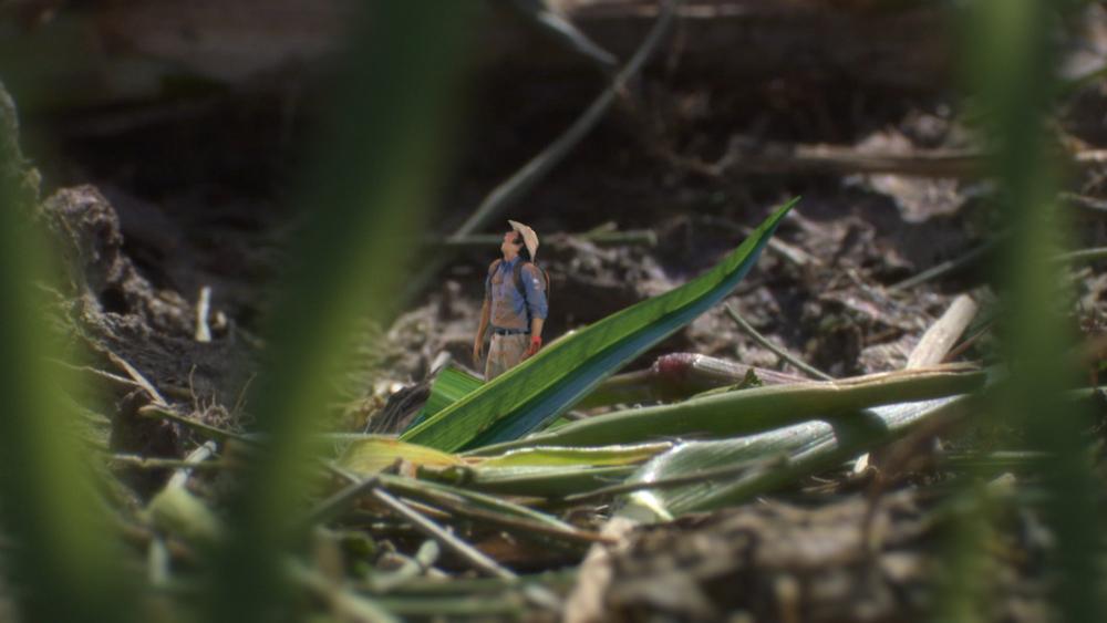 AWA Ep 04_Grass Cutter Ants01.mov.10_08_43_08.Still004.jpg